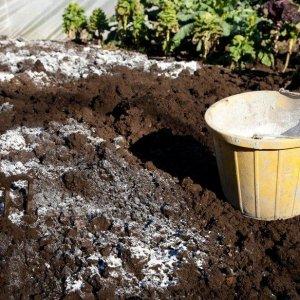 Известкование почвы: когда и для чего делают