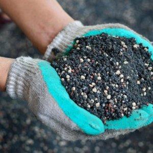 Чем удобрить землю осенью: какие удобрения вносить под перекопку для восстановления плодородия почвы