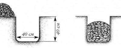 Картинка 4