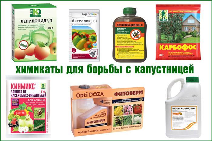 Химикаты от капустницы