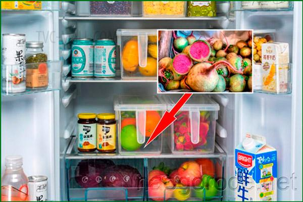 Редька на нижней полке холодильника