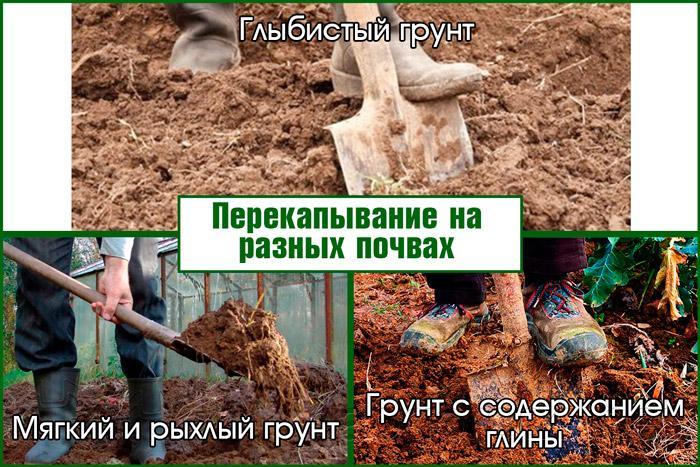 Перекапывание на разных почвах