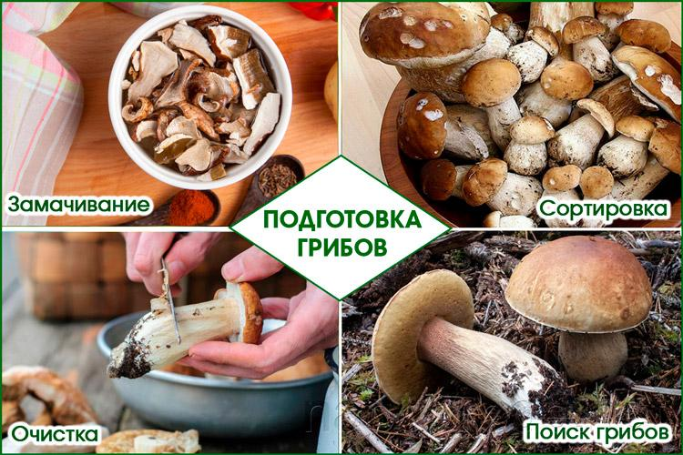 Готовка белых грибов