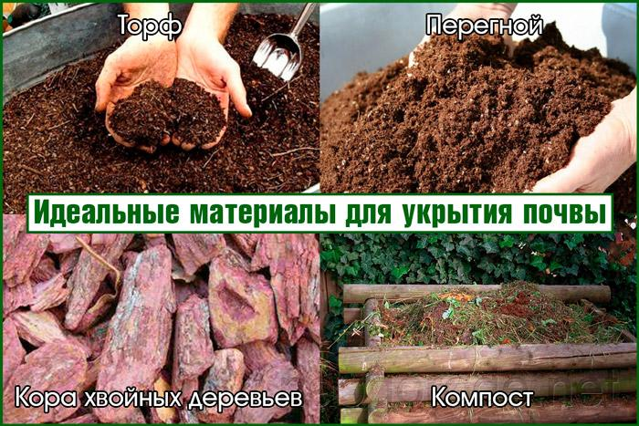 Укрытие почвы